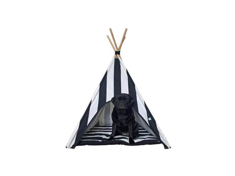 Tenda da Niuniu Pets