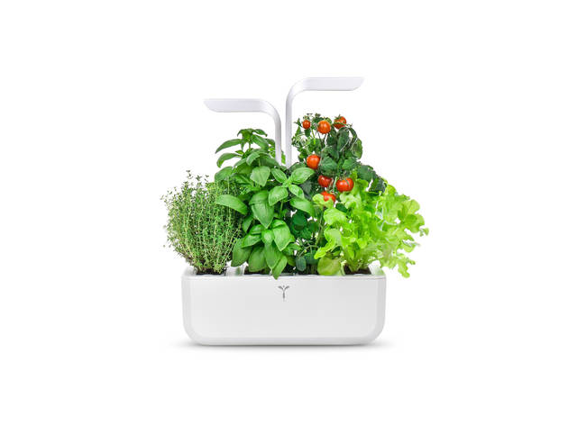Artigos de Cozinha, Shopping Natal 2020, Véritable, Horta Urbana