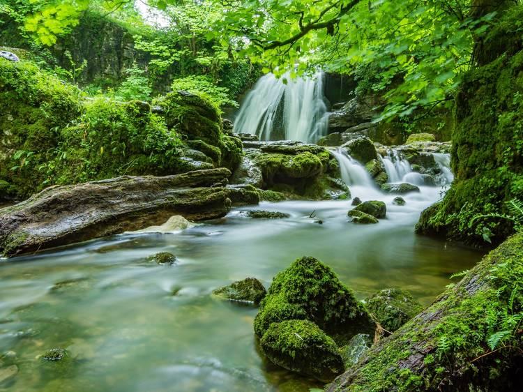 Cool off under a rainforest waterfall