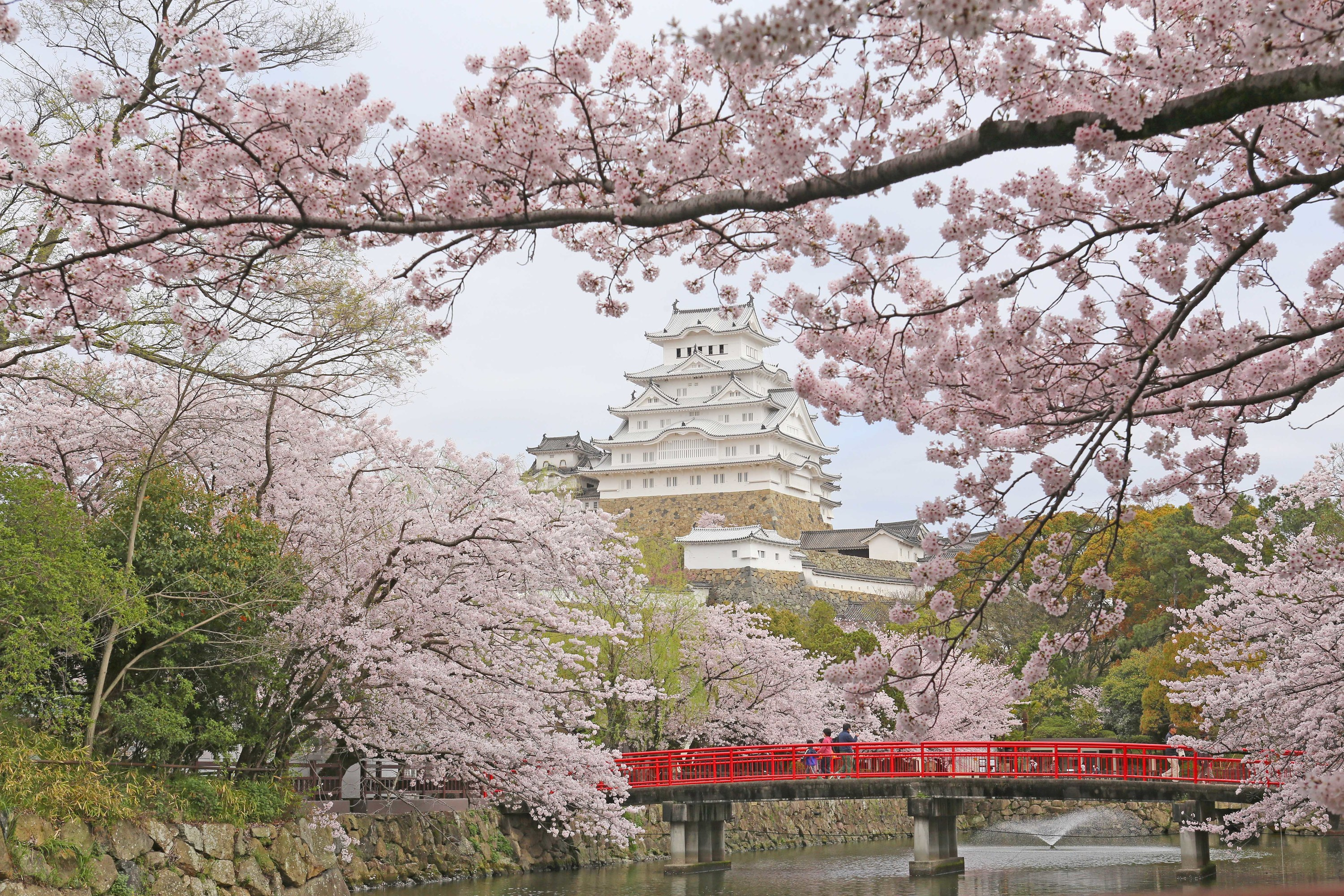 The Most Beautiful Places In Japan Time Out Tokyo