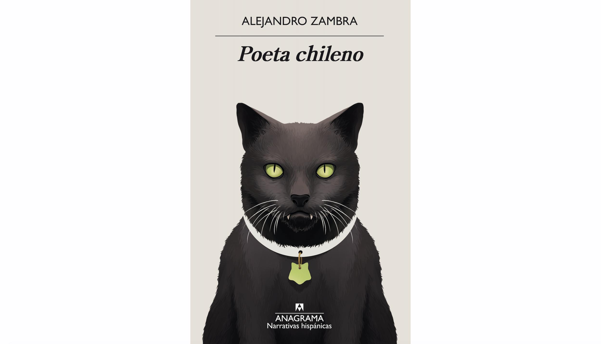 Poeta chileno, d'Alejandro Zambra