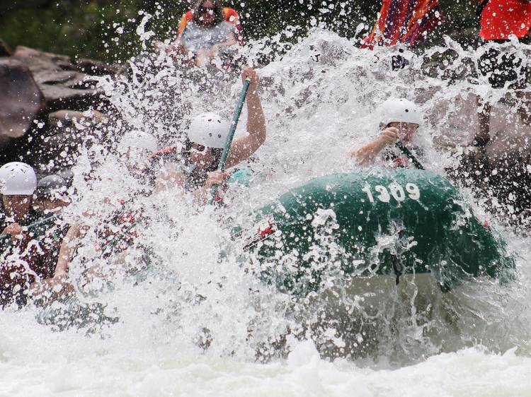 Go whitewater rafting on the Navua River