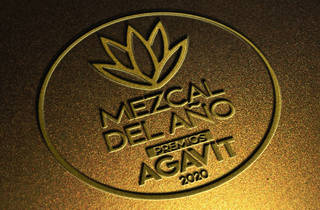 Imagen con un agave y las leyenda Mezcal del Año Premios Agavit