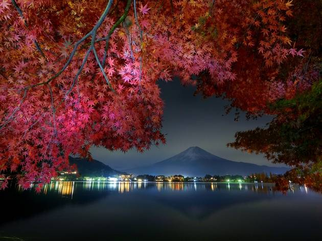 Autumn leaves, Kawaguchiko, Mt Fuji