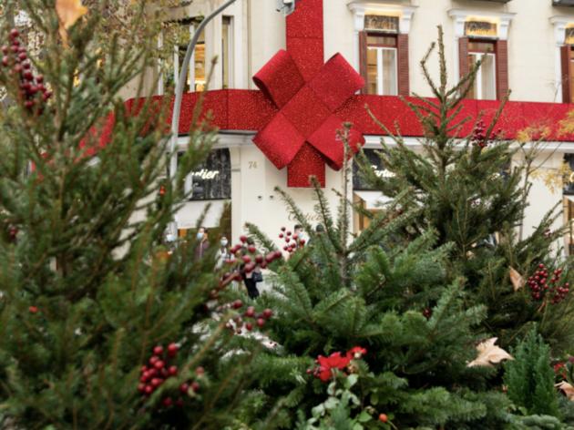 Jardín Urbano de Navidad calle Ortega y Gasset