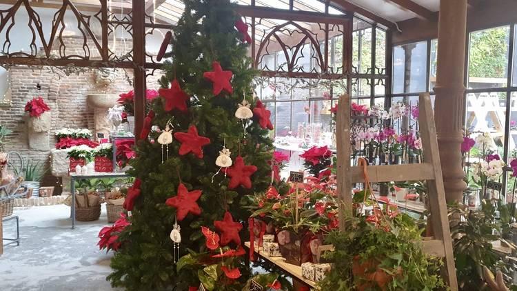 La floristería más antigua de Madrid, ahora conocida como El Ángel del Jardín