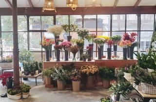 El Jardín del Ángel floristería