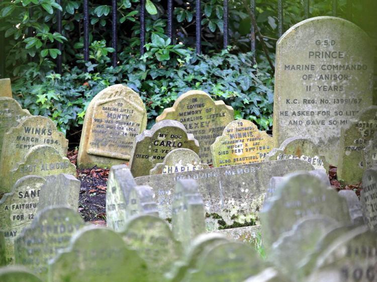 Hyde Park Dog Cemetery