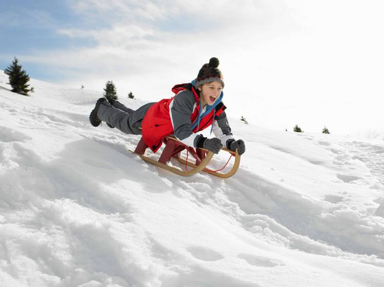 Head for the hills and go sledding