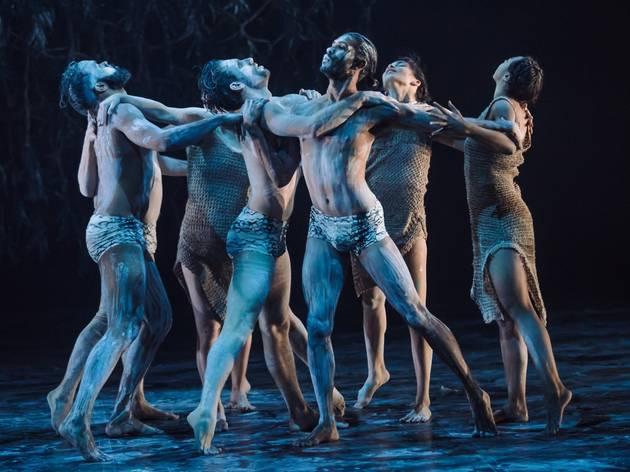 Bangarra dancers bathed in blue light