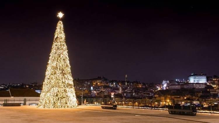 Árvore de Natal do World of Wine