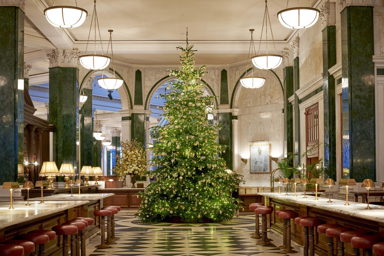 The Ned Christmas tree 2020
