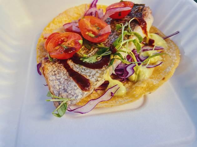 Holbox fish taco