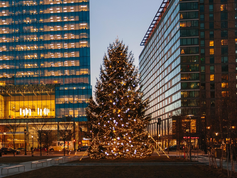 Boston Seaport Christmas Tree