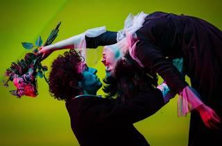 The Flying Lovers of Vitebsk