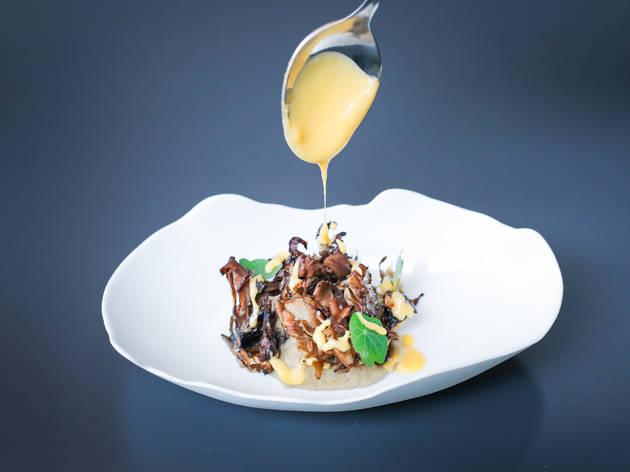 pratos com cogumelos