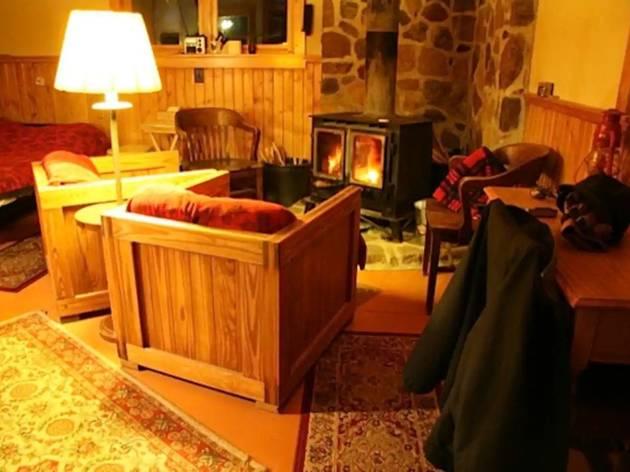 christmas tree farm cozy Airbnb