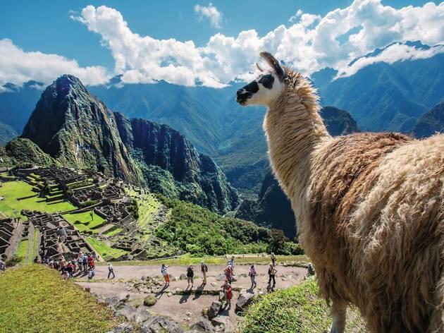 Santuario Machu Picchu. Perú