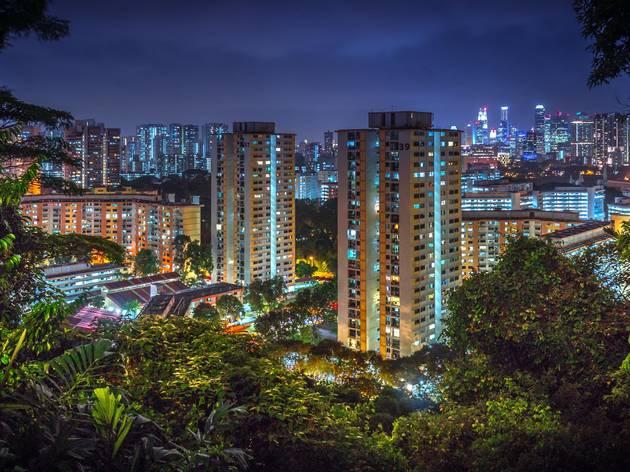 Singapore, urban jungle