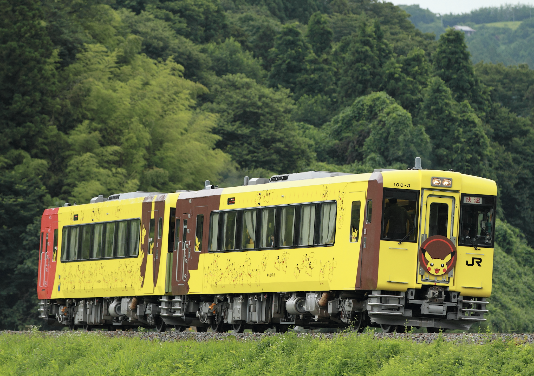 Pokémon with You Train
