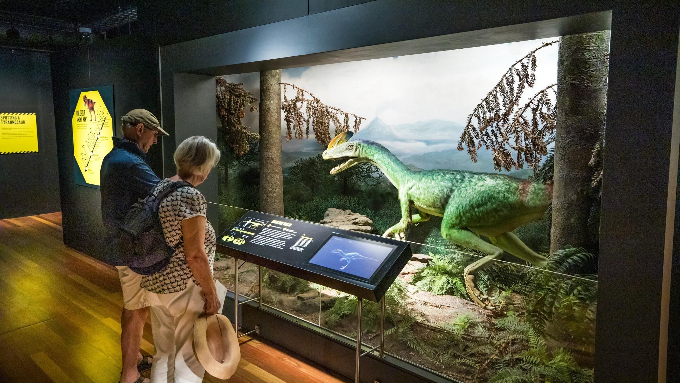 The new Australian Museum