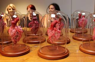 Beginner Sheep Heart Corrosion Casting Workshop