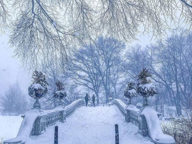 snow nyc central park