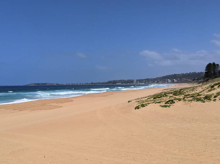 Long Reef and Fishermans Beach