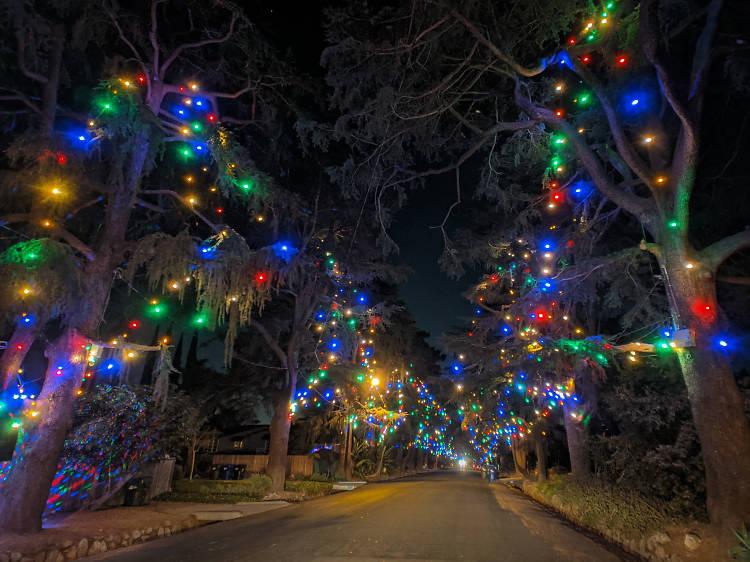 Check out Christmas lights