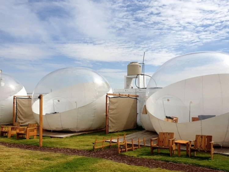 Glamping Amate, Tlaxcala