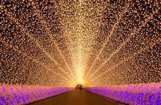 Nabana no Sato Illuminations, Mie – cropped to fit