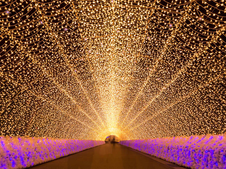Nabana no Sato Illuminations, Mie