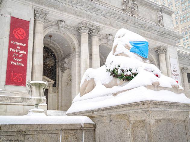 NYPL snow lions