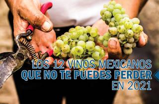 Los vinos mexicanos que no te puedes perder en 2021