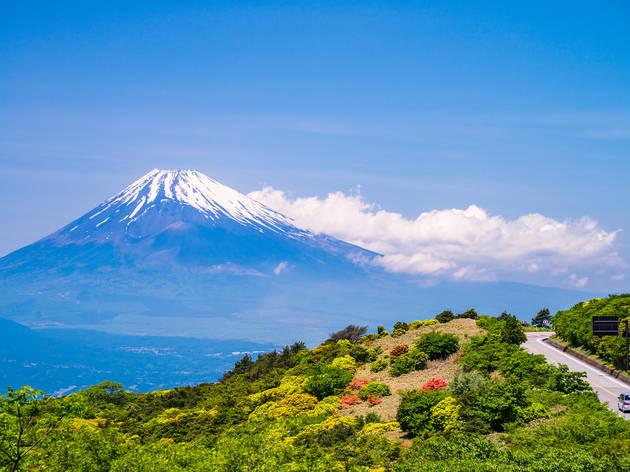 Izu Skyline, Shizuoka