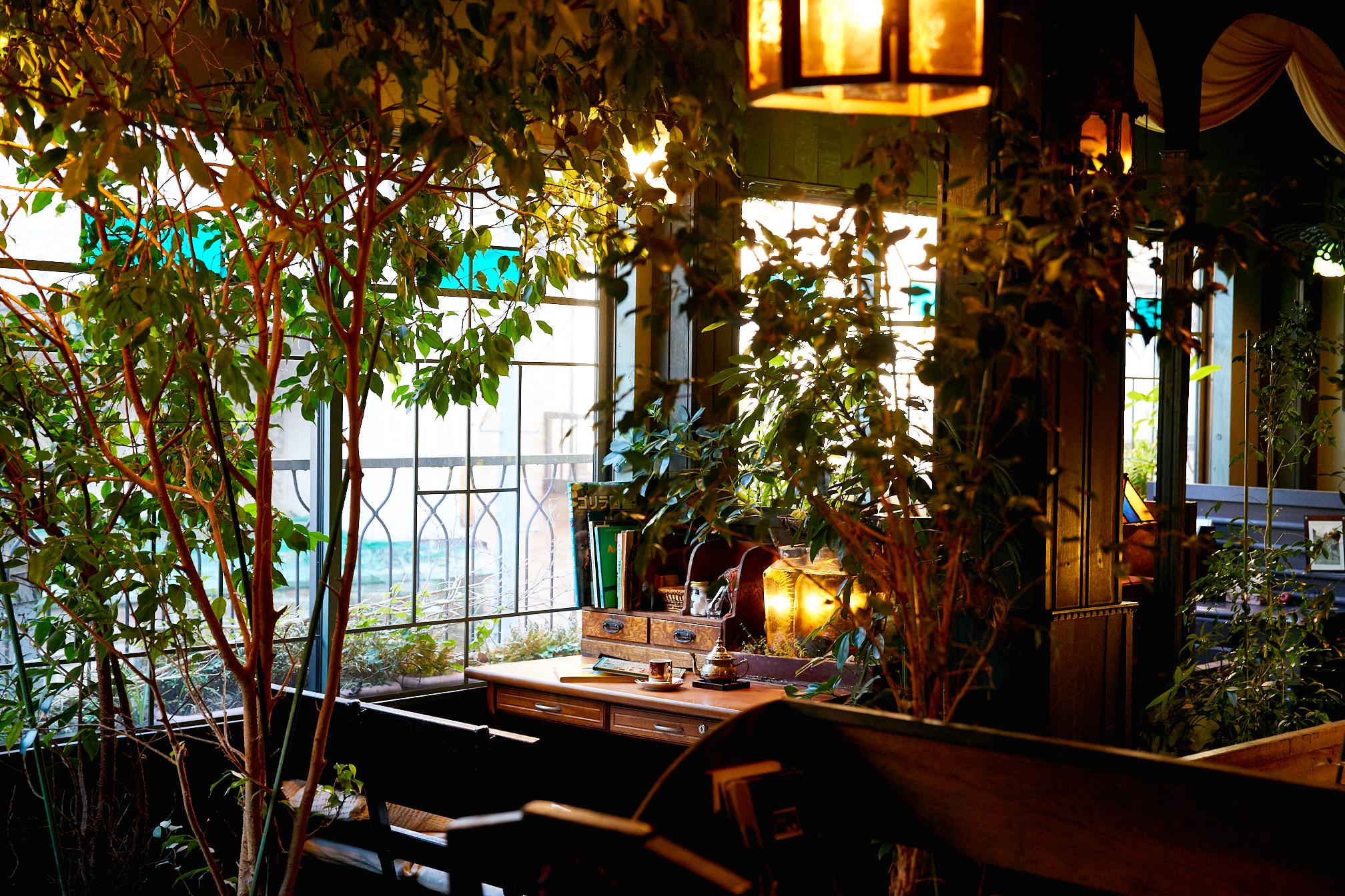 植物カフェ