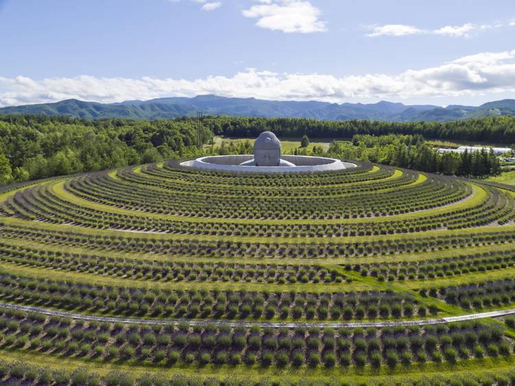 Hill of the Buddha at Makomanai Takino Cemetery, Hokkaido