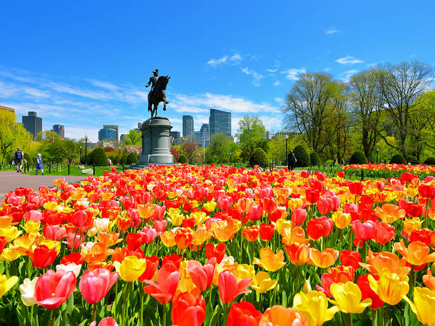 The best free things to do in Boston