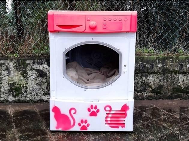 Esta é a primeira de várias casotas para gatos de colónia em Valongo