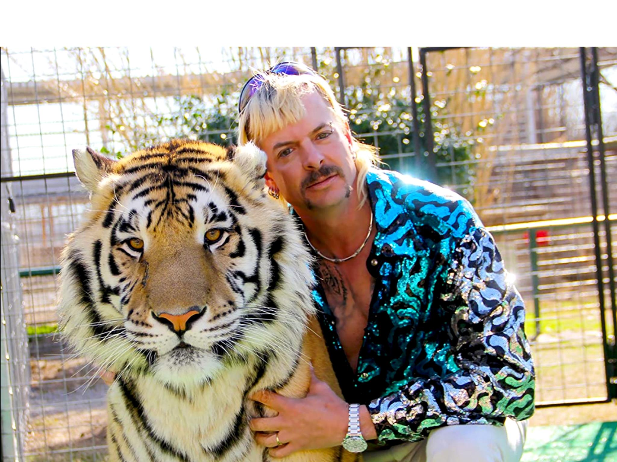 Televisão, Séries, Tiger King