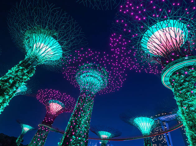 Garden Rhapsody returns to Gardens by the Bay from January 8