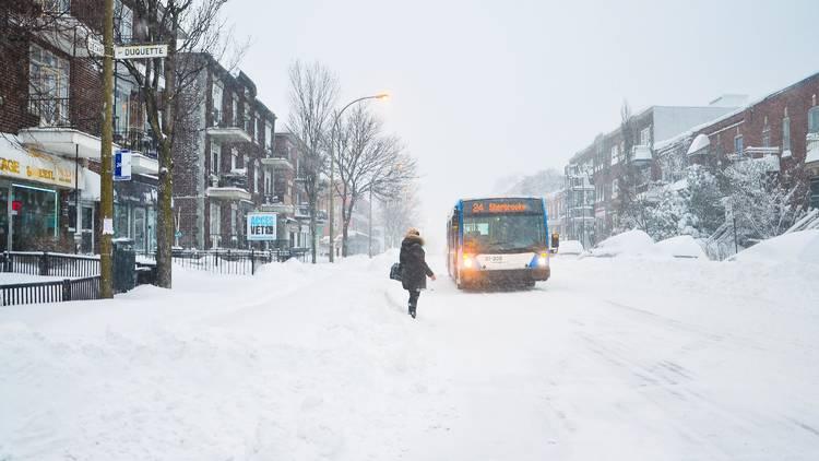 Winter, L'hiver