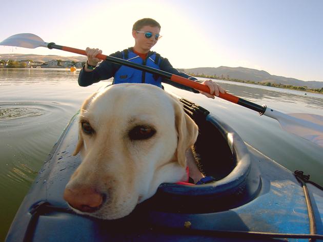 Una vida de perros con Bill Farmer