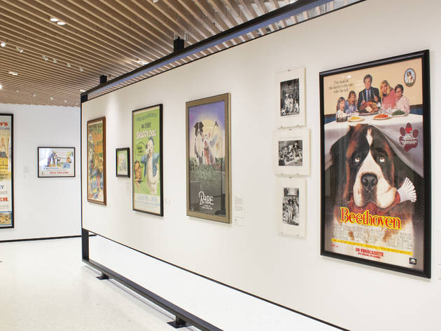 AKC Museum of the dog Hollywood dogs