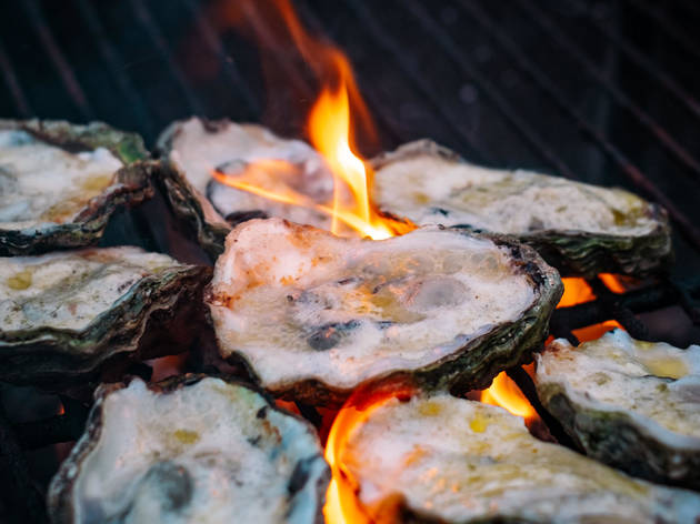 Decatur oysters