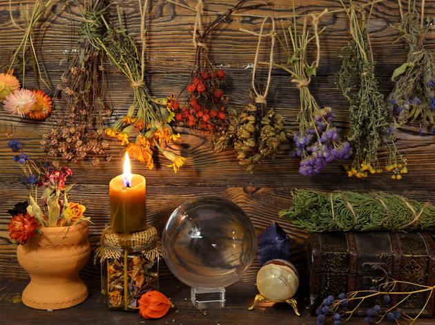 Toma un taller de magia y herbolaria