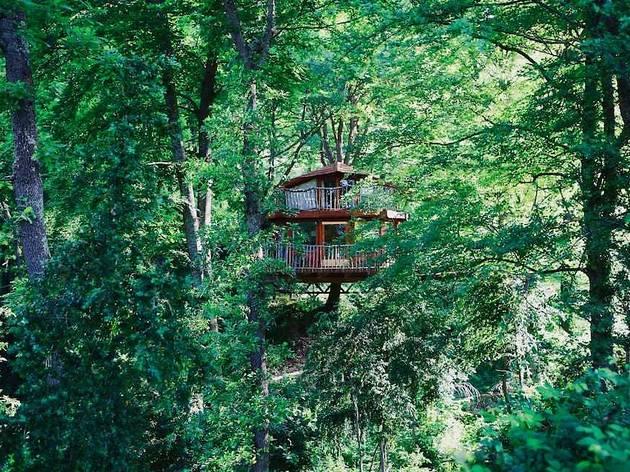 7 cabañas en los árboles para una escapada de altura