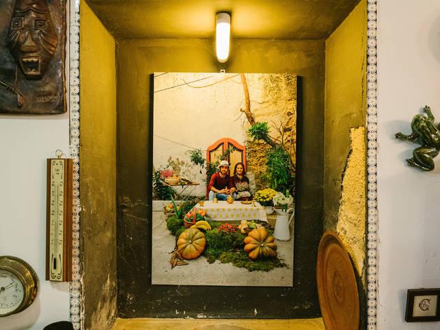 Exposição Verde Vintage na Casa das Conchas