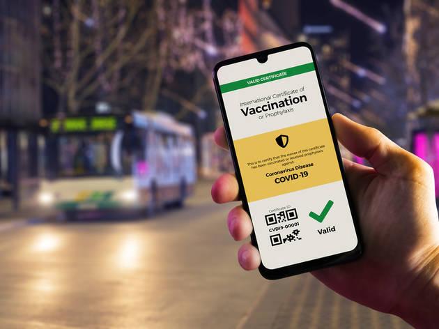 Digital vaccination certificate on a smartphone
