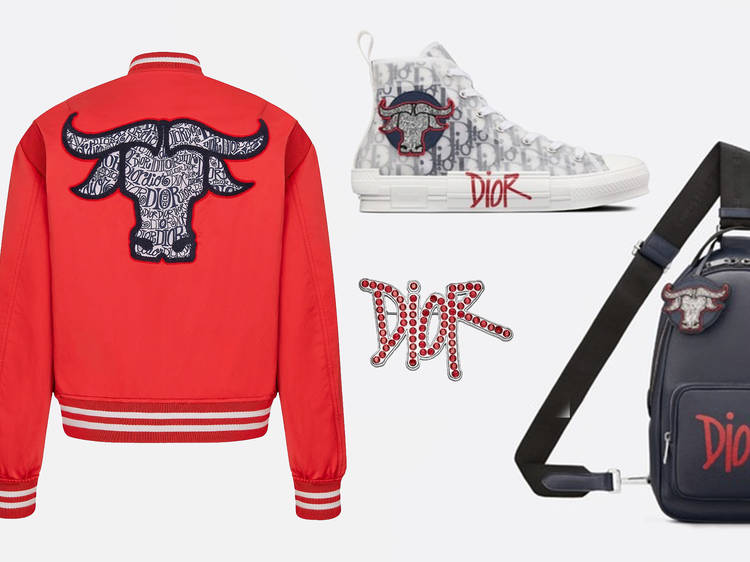 Dior x Shawn Stussy